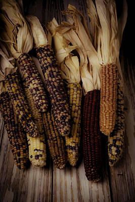 Indian Corn Wall Art - Photograph - Moody Indian Corn by Garry Gay
