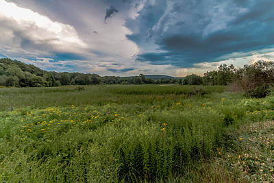 Photograph - Moody Meadow by Brian MacLean