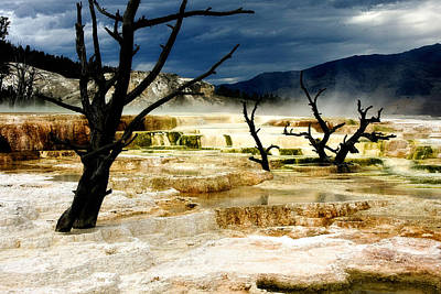 Mammoth Hot Springs Photograph - Moody Minerva by Lana Trussell