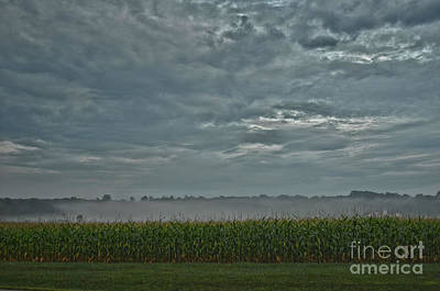 Photograph - Moody Morning by Lila Fisher-Wenzel