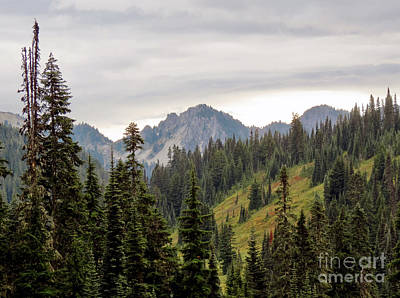 Photograph - Moody Mountain Scene by Chris Anderson