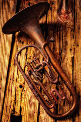 Tuba Wall Art - Photograph - Moody Old Tuba by Garry Gay