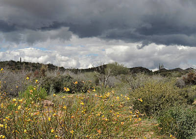 Carefree Arizona Photograph - Moody Skies by Gordon Beck