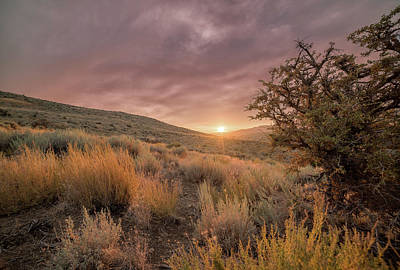 Photograph - Moody Summer Sunset In The High Desert Of Nevada With Sagebrush And Tall Grass by Brian Ball