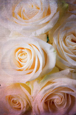 Photograph - Moody Textured White Roses by Garry Gay