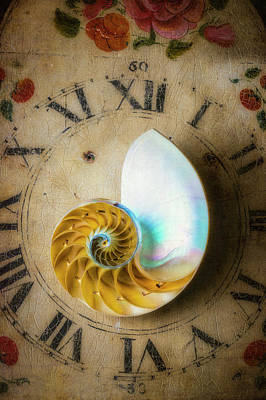 Photograph - Moody Time And The Nautilus Shell by Garry Gay