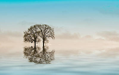 Manipulation Photograph - Moody Trees by Jean Noren