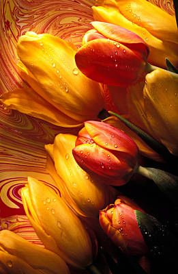 Hand-painted Photograph - Moody Tulips by Garry Gay