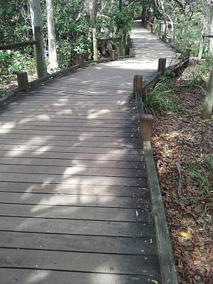 Photograph - Mooloolaba Path by Cassy Allsworth