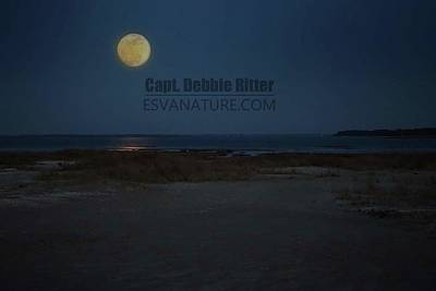 Photograph - Moon 6142 by Captain Debbie Ritter