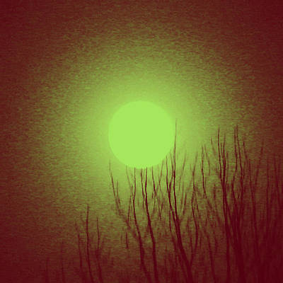 Photograph - Moon Above The Trees by Patricia Januszkiewicz