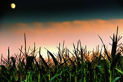 Photograph - Moon And Corn by Holger Debek