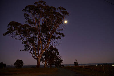 Photograph - Moon At Dawn by Kenneth Hall