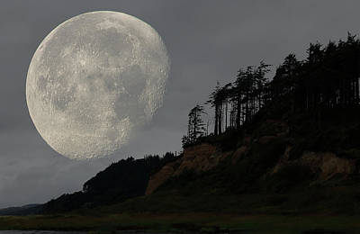 Photograph - Moon At Roosevelt Beach Wa by Bob Cournoyer