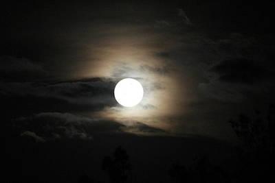 Photograph - Moon by Athala Carole Bruckner