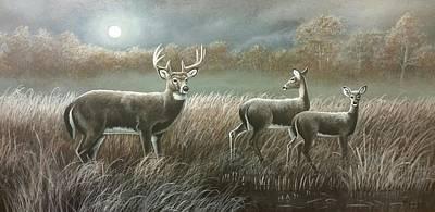Wall Art - Painting - Moon Beams by Paul Makuchal