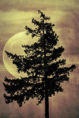 Photograph - Fantasy Moon by Marilyn Wilson