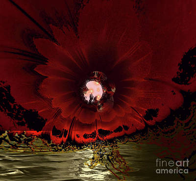 Photograph - Moon Blossom by Elaine Hunter