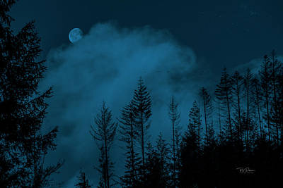 Photograph - Moon Clouds Trees by Bill Posner