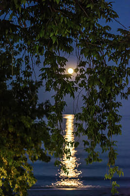 Photograph - Moon Curtain by Patti Raine