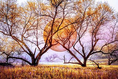 Photograph - Moon Etchings Morning Sky by Debra and Dave Vanderlaan
