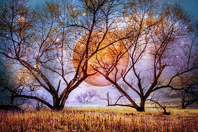 Photograph - Moon Etchings Night Sky by Debra and Dave Vanderlaan