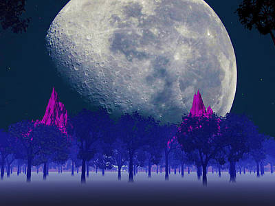 Photograph - Moon Forest by Mark Blauhoefer