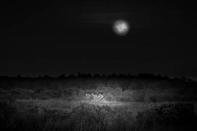 Photograph - Moon Glow by Mark Andrew Thomas