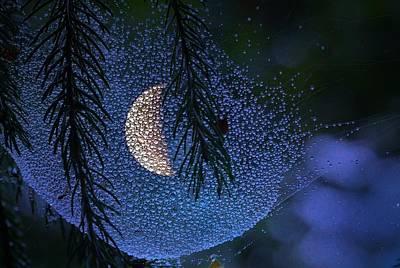 Moon In A Web Art Print by Molly Dean