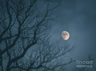 Photograph - Moon In The Mist by Cheryl Baxter