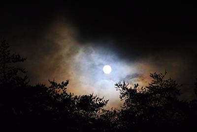 Photograph - Moon In The Treetops by Kathryn Meyer