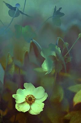 Photograph - Moon Light by Jenny Rainbow