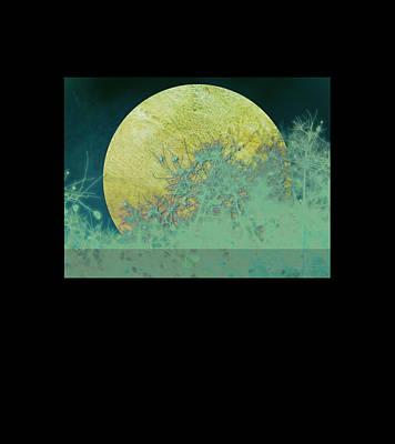 Moon Wall Art - Digital Art - Moon Magic by Ann Powell
