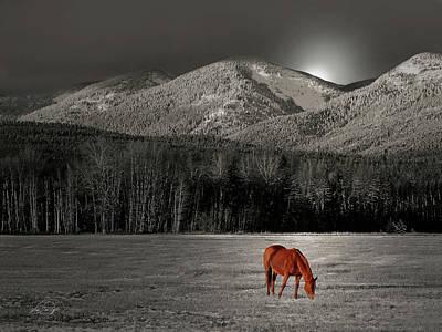 Montana Digital Art - Moon Of The Wild Horse by Vicki Lea Eggen