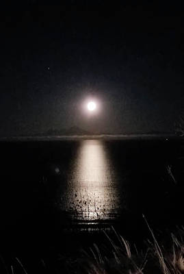 Photograph - Moon On Ocean by Britten Adams