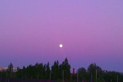 Photograph - Moon On Perfect Purple by Nieve Andrea