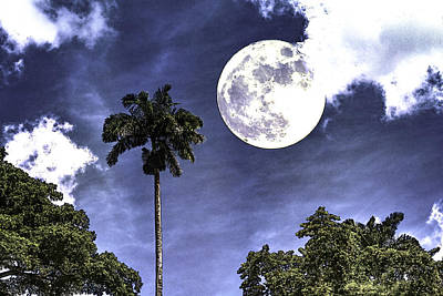Digital Art - Moon Over Belize Two by Ken Frischkorn