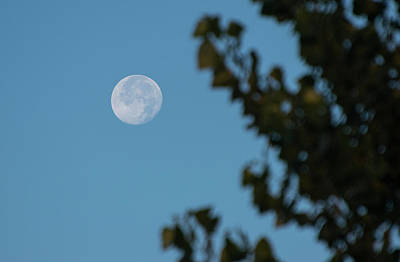 Photograph - Moon Over Burley Idaho by Tom Cochran