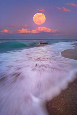 Photograph - Moon Over Coral Cove Park In Jupiter Florida by Justin Kelefas
