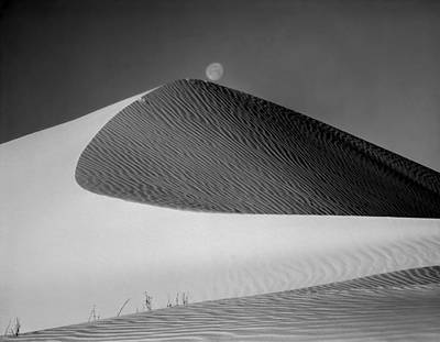 Photograph - 214804-bw-moon Over Dune  by Ed  Cooper Photography