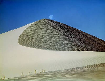 Photograph - 214804-moon Over Dune  by Ed  Cooper Photography