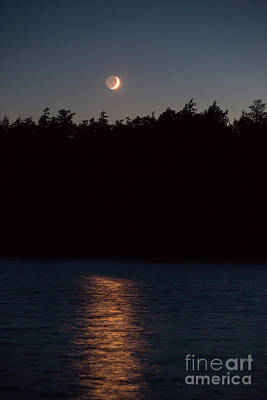 Photograph - Moon Glow by Kevin McCarthy
