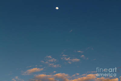 Photograph - Moon Over Pink Clouds by Les Palenik