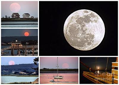 Photograph - Moon Over Plymouth Harbor by Janice Drew