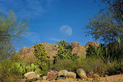 Mark Myhaver Royalty Free Images - Moon Over Pusch Ridge h30 Royalty-Free Image by Mark Myhaver