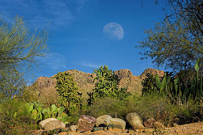Mark Myhaver Royalty Free Images - Moon Over Pusch Ridge h32 Royalty-Free Image by Mark Myhaver