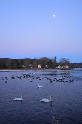 Photograph - Moon Over The Connecticut River And Swans by John Burk