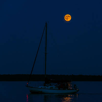 Photograph - Moon Over The Dock by Lonnie Paulson