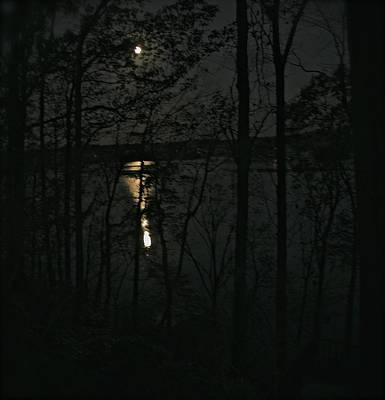 Photograph - Moon Over The Elk by Gwendolyn Christopher