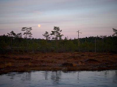 Moody Trees - Moon over Wetlands by Jouko Lehto